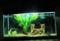 Продам аквариум 150 литров, 100 литров, 50 литров, Кузнецк