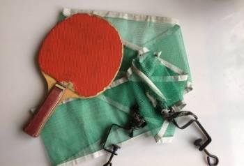 Сетка и ракетка для настольного тенниса, Пенза, цена: 200р.