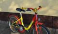 Велосипед ищет новый дом, Калининград