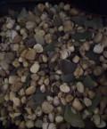 Продам камушки для аквариума, Мурманск