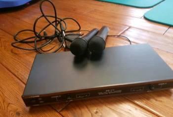 Радиосистема на два микрофона Invotone WM210