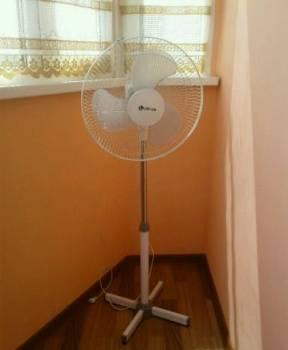 Вентилятор напольный, Анна, цена: 500р.