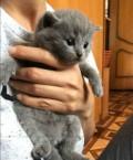 Мальчик, Петровское