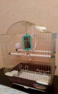 Клетка для попугая, Липецк