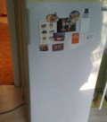 Холодильник атлант, Дружба