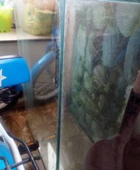 Аквариум, Белово, цена: 1 000р.