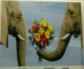 Живопись по номерам Слоны, Пенза