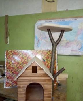 Домик для кошки(кота), Курск, цена: 3 000р.