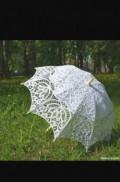 Зонт кружевной, Сковородино