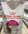 Корм для кошек Royal KaninSavour exigent, Двуреченск