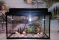 Новый аквариум с крышкой и подсветкой, Королев
