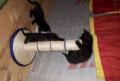 Черные котята, Андреевка