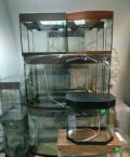 Продам аквариумы, Тамбов