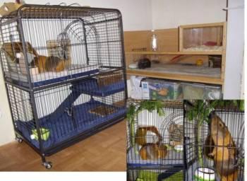 Клетка для грызунов животных птиц