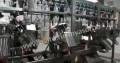 Линия резки куриной тушки Stork C-5000A, Махнево