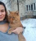 Рыжий кот, Тамбов