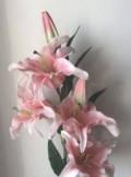Лилии из латекса, Томск