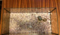 Палюдариум, размер 50*25*20, Ашитково