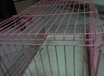 Клетка для кролчат