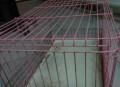 Клетка для кролчат, Дубовское