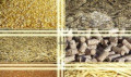 Отруби, пшеница, овес, горох, кукуруза, сено, Путятино