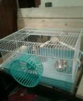 Клетка для гызунов, Билимбай