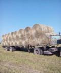 Продаю сено, Новоалтайск