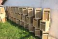 Пчёлы, пчелопакеты, пчеломатки, Котлас