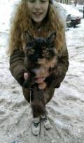 Кошка бесплатно, Сургут