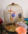 Клетка для попугая, Белгород