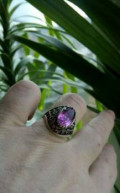 Серебряное кольцо, Дальнегорск