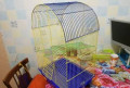 Клетка для домашнего питомца, Тогул