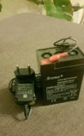 Зарядное устройство для 6В Robiton LAC6-600, Тамбов