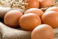 Домашние куриные яйца, Русский Акташ