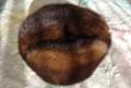 Плавки мужские sealine, шапка, Каневская