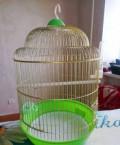 Клетка для попугая, Степное