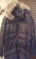 Мужской костюм в полоску, теплая зимняя куртка, Кошки