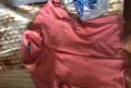 Заказать мужской классический костюм, рубашка Ralph Lauren, Будогощь
