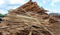 Опилки, горбыль 3м в связках, дрова, Новосибирск