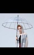 Зонт женский, Скопин