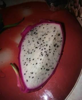 Питайя, питахайя, драконий фрукт. Семена