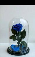 Вечная Роза, Пенза
