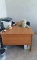 Стол письменный с тумбочкой, Ставрополь