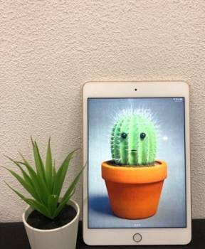 Бу Apple iPad mini 4 c поддержкой только Wi-Fi