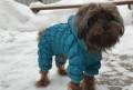 Комбинезон для собак мелких пород Новый, Москва