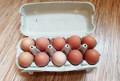 Домашние яйца. Нина Ивановна, Старый Оскол