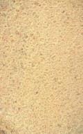 Песок, Кизел