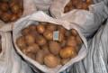 Продаю картофель, Ефремов