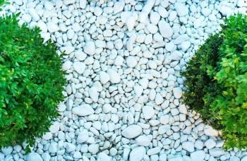 Мрамор галтованный галька белая ландшафтный